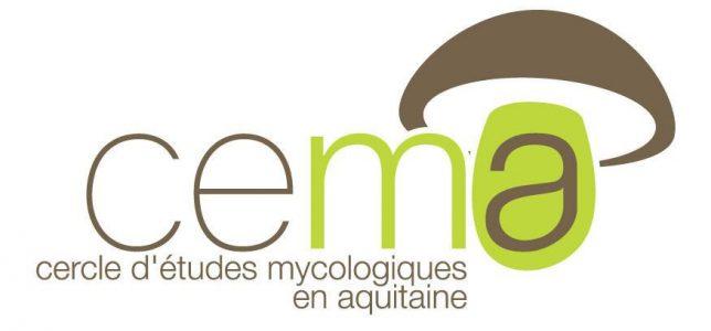 cema-mycologie